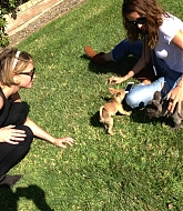 Jennifer Lawrence & Best Friend Laura Hang Out with Puppies on Oct 1st